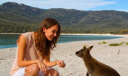 Tasmania Tax
