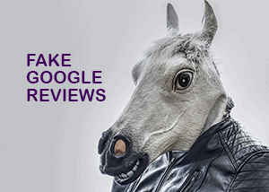 Fake Google Reviews