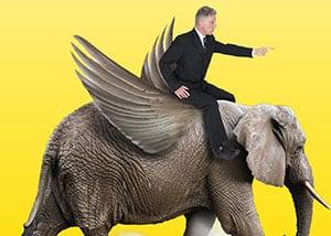 Business man on elephant